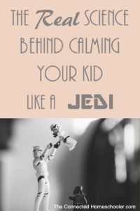 The Real Science Behind Calming Your Kid Like a Jedi