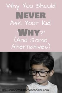 "Why You Should Never Ask your Kid, ""Why?"" (And Some Alternatives)"